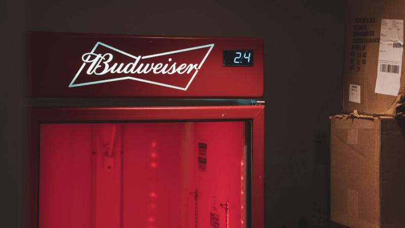 best mini fridge for beer