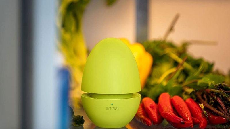 Best Refrigerator Deodorizer to Keep Your Fridge Fresh